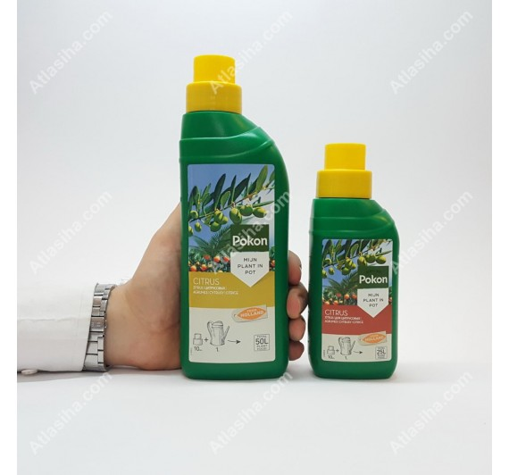 کود گیاهان مدیترانه ای Pokon (مرکبات، انجیر و زیتون)