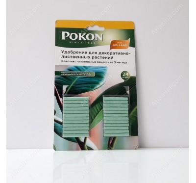 کود مخصوص گیاهان سبز برگ Pokon (قلمی)