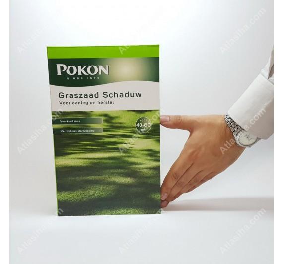 چمن مخصوص سایه Pokon
